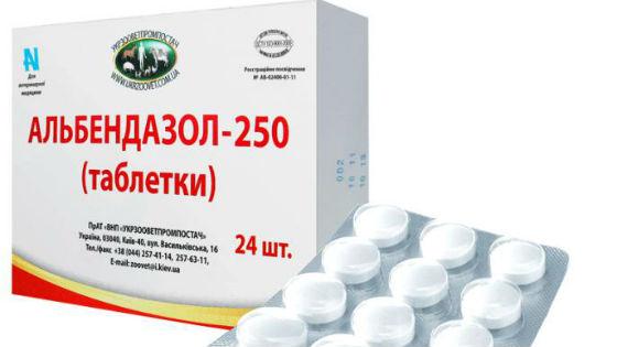 Препараты альбендазола для лечения гельминтоза у ребенка
