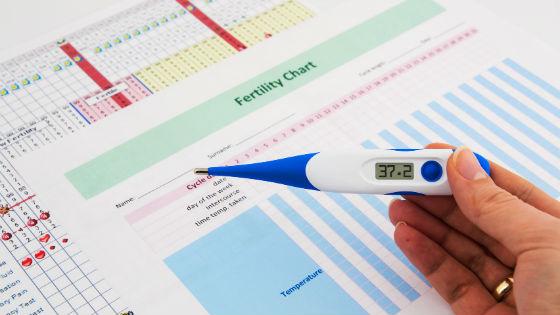 Измерение базальной температуры для определения времени зачатия