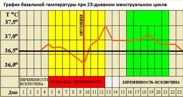 Западение показаний графика перед овуляцией