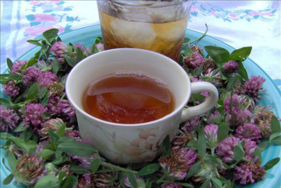 Чай с луговой кашкой для снятия приливов