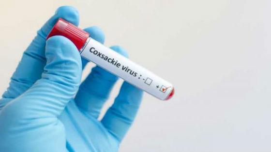 Диагностика вирусных заболеваний по анализу крови