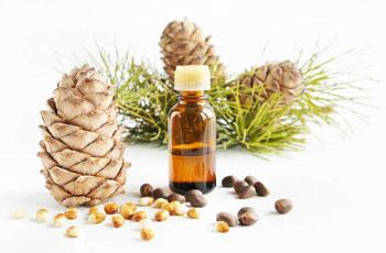Эфирное масло кедра, полезные свойства и применение, домашние рецепты, противопоказания: Нетрадиционная медицина