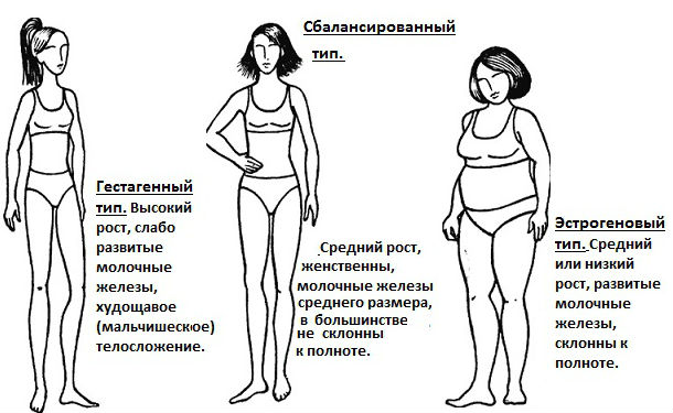 Фенотипы женщин по гормональному признаку