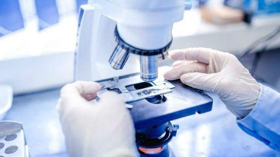 Исследование взятого при пункции щитовидки материала
