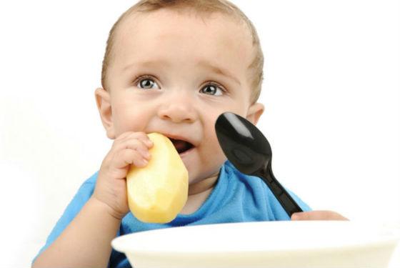 Картофель в рационе ребенка первого года жизни