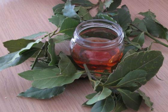 Лаврушка с медом для укрепления