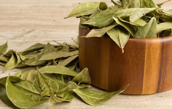 Лавровый лист хорошо укрепляет и восстанавливает иммунитет