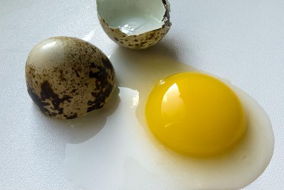 Вместо куриного можно делать составы с перепелиным яйцом