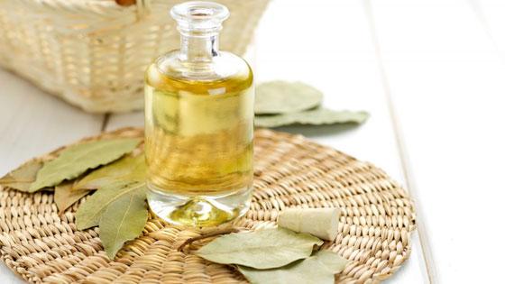 Применение масла из лаврового листа