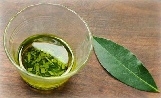 Самостоятельно приготовленное масло из листиков лавра
