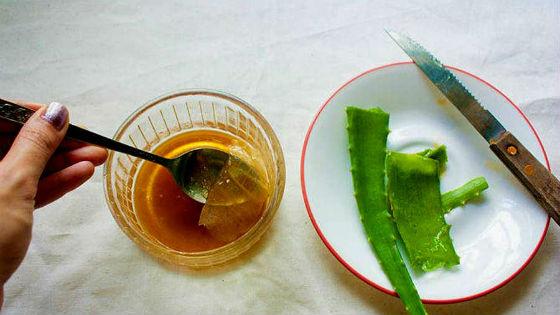 Ингредиенты для приготовления целебного напитка
