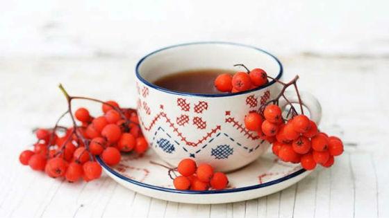 Рябиновый мочегонный чай для выведения жидкости
