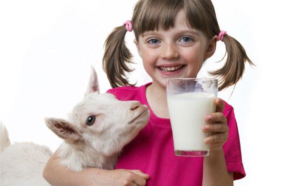 Девочка со стаканом в руке обнимает козу