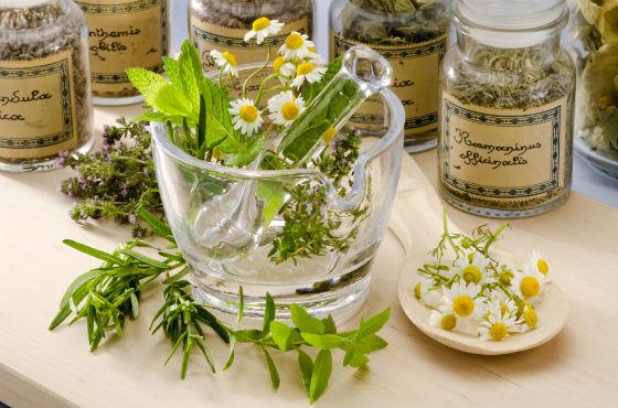 Травы для снятия воспаления уретры