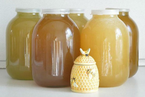 Мед разных сортов различается по цвету и консистенции