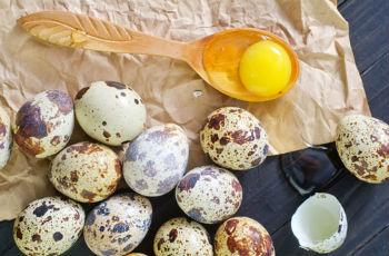 Сырые перепелиные яйца - польза и вред, можно пить натощак
