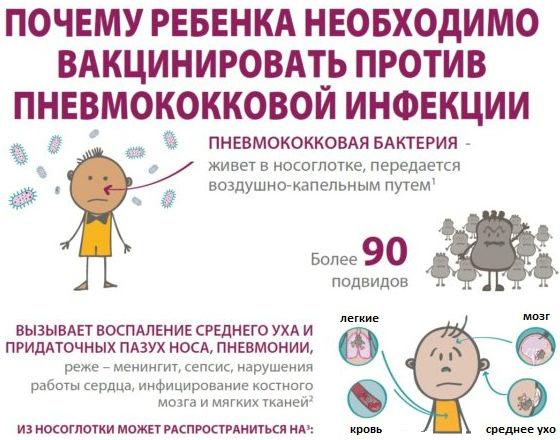 Почему нужно проводить вакцинацию против пневмококковой инфекции