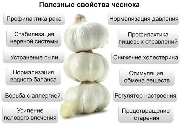 Полезные свойства овоща