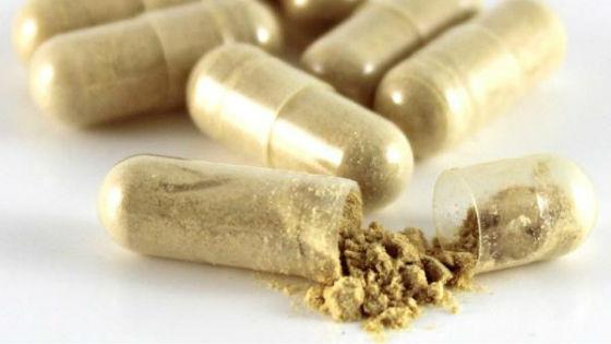 Порошок полыни можно принимать в желатиновых капсулах