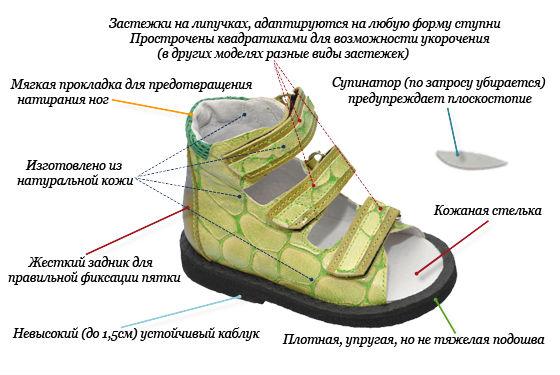 Ортопедическая обувь для лечения дефектов развития ног