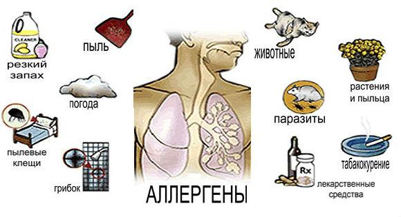 Причины развития насморка на раздражение аллергенами
