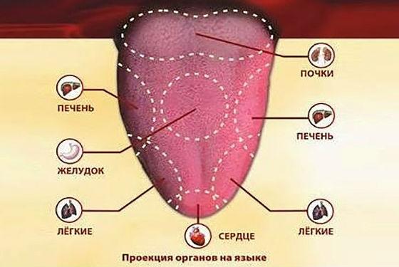 О чем расскажут трещинки на разных частях поверхности