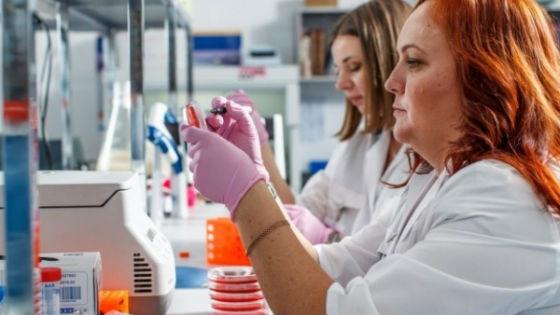 Для выявления нормы содержания гормонов в крови проводится анализ