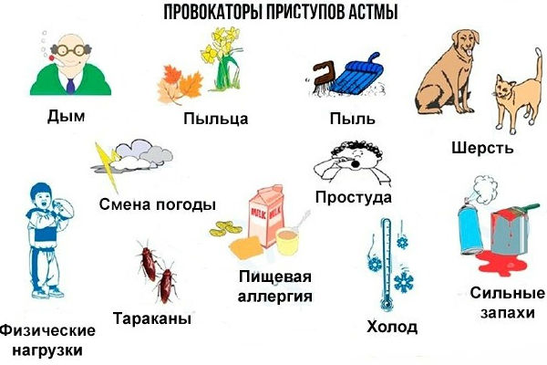 Причины развития астматического приступа
