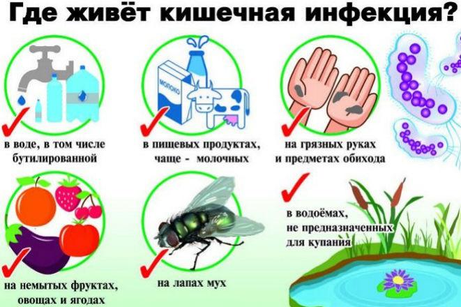 Пути заражения инфекционными заболеваниями кишечника