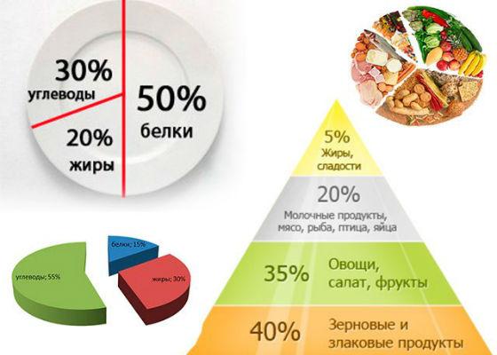 Соотношение продуктов в рационе беременной женщины