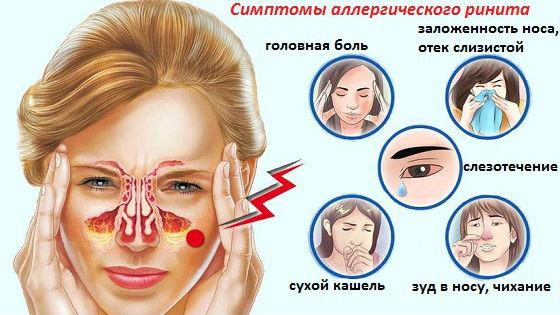 Симптомы и отличия насморка по причине аллергии