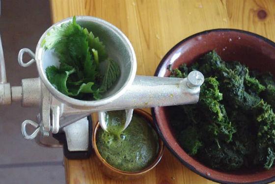 Приготовление сока из свежей травы