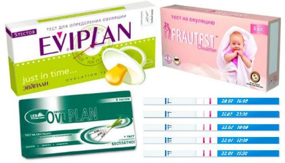Тесты для определения благоприятного для зачатия периода