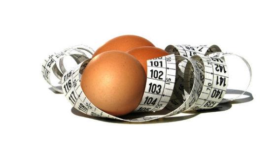 Яйца как основа диетического питания