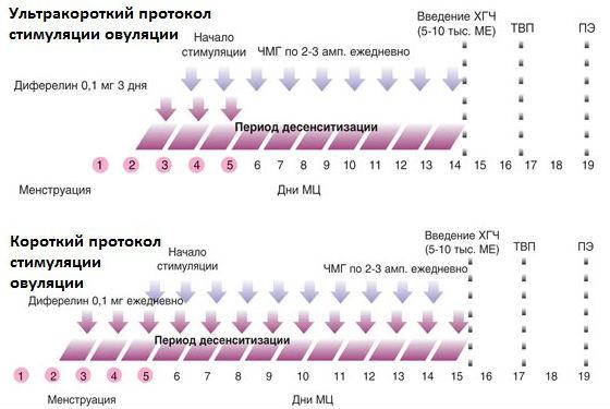 Ультракороткий и короткий протоколы стимулирования работы яичников